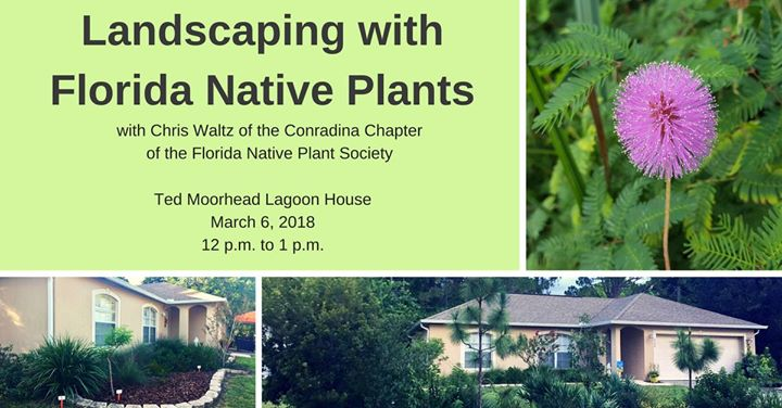 Landscaping with florida native plants space coast event for Landscaping with native plants